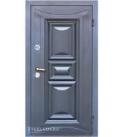 Двери Termoskin-light 7016 Металлические